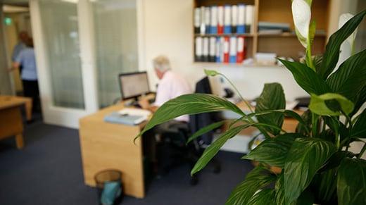 credit union member services